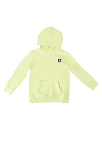Abercrombie & Fitch green Logo Pullover Hoodie 11352KADB58D32GS_1