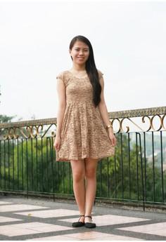 Monisha Lace Brown Dress