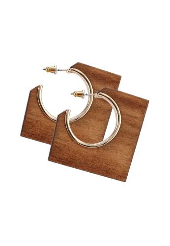 ALDO 褐色 Adrarwen 耳環 83552AC155FF94GS_1
