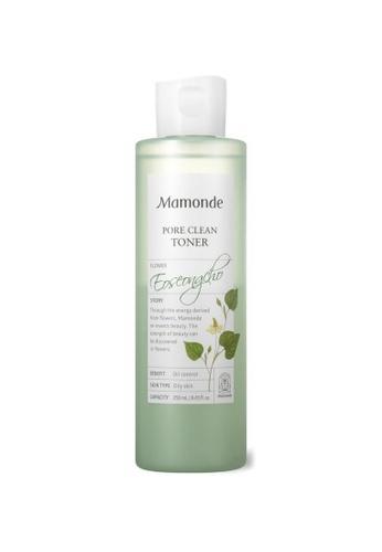 Mamonde Pore Clean Toner 250ml DAA46BE49FA8B7GS_1
