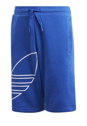 ADIDAS blue big trf shorts 12B98KA26DA964GS_1