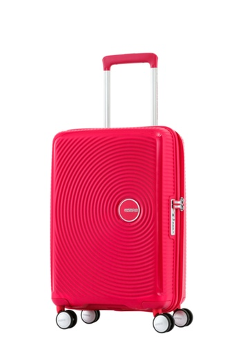 American Tourister pink American Tourister Curio Spinner 55/20 TSA AM536AC64ZYDSG_1
