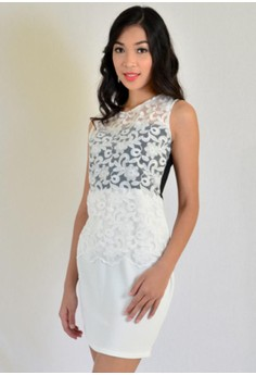 Aw Bodycon With White Lace Combination
