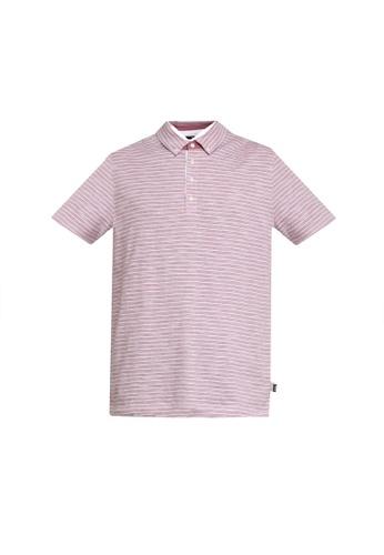 BOSS pink Platt 08 Striped Polo Shirt 61528AA5E1C7A5GS_1