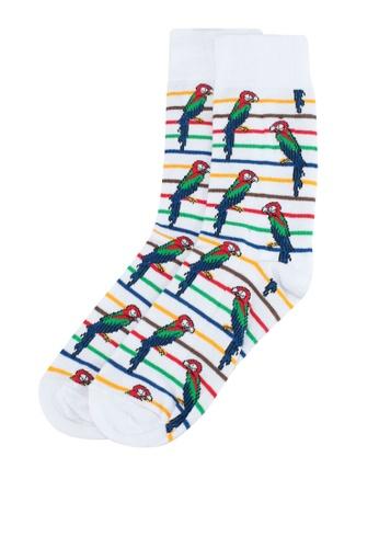Topman white White Parrot Stripe Socks 3A046AAE4625A7GS_1