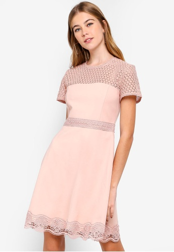 Forever New pink Darcey Lace Double Tier Ponte Dress C78D0AA9291934GS_1