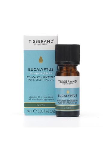 Pure & Well Tisserand Eucalyptus Essential Oil 9Ml 35D62ES192FD7AGS_1