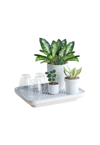 Qualy Oasis Tray Self-Watering Plant Tray 05ED4HLE71A661GS_1