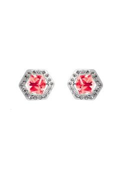 Six Sided Crystal Earrings