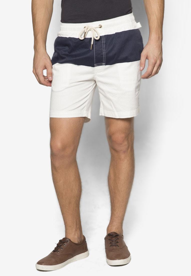 Polar Panel Boardy Shorts