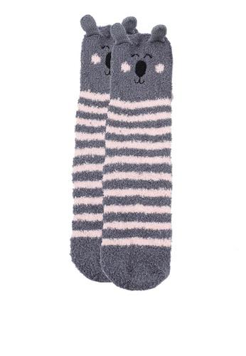 Dorothy Perkins multi Grey 1 Pack Boxed Koala Sock B1EBAAA347BC82GS_1