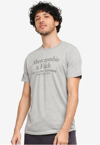 Abercrombie & Fitch grey New Print Logo T-Shirt AB423AA0T1AGMY_1