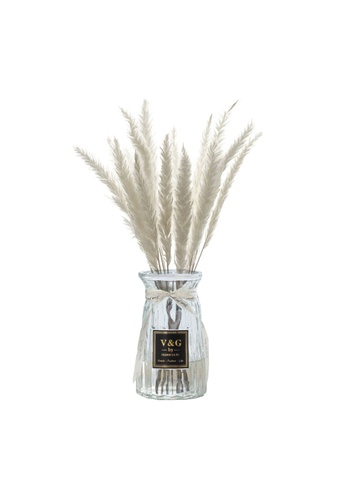 Propstation Ornamental Dried Preserved Pampas Grass White in Clear Glass Vase 5B197HLD7F7826GS_1