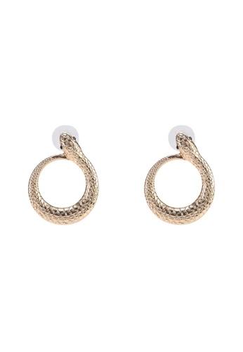 ALDO multi Glauca Earrings FA1D2AC1ABEC1CGS_1