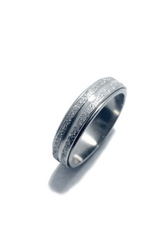 Stainless Steel Spinning Ring G2
