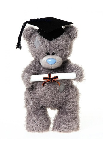 Her Jewellery Me to You Plush Toys - 10″ Standing Graduation Tatty Teddy D341ATHD923376GS_1