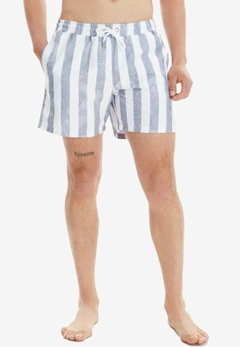 Trendyol grey Striped Swimming Shorts 74675US2080996GS_1