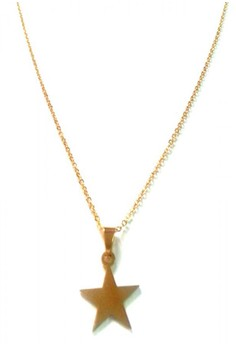 Stainless Gold Lucky Star Pendant