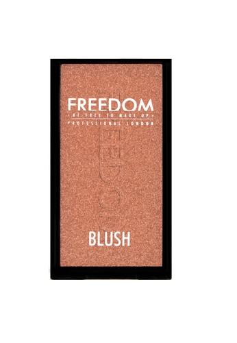 Freedom Makeup Freedom Blush Professional Pro Blush 5 - Beyond FR785BE51DHOSG_1