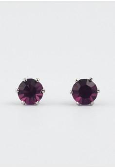 Lucky Birthstone Earrings- February