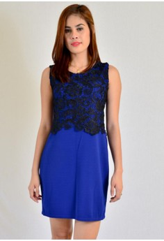 Bodycon With Half Body Lace