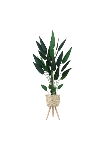 Propstation Potted Faux Bird of Paradise Traveller Tree 160cm with Whitewash Basket Stand 1EFB4HL6F768AEGS_1