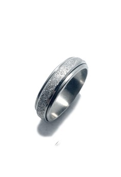 Stainless Steel Spinning Ring G1