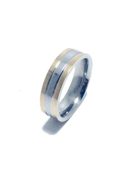 Stainless Steel Barrel Ring (two tone)