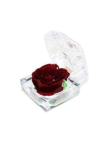 Her Jewellery red Everlasting Preserved Rose - Rose in Ring Box (January, Garnet) 2D074HL9FE69DCGS_1