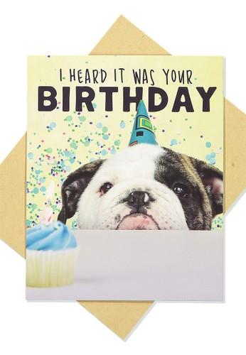 Typo multi Funny Birthday Card 67D98AC17B1455GS_1