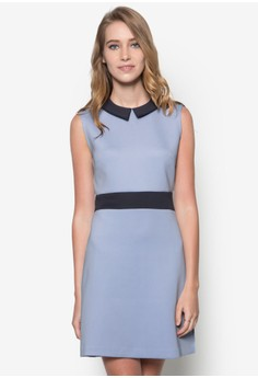 Collection Contrast Collar Fit & Flare Dress