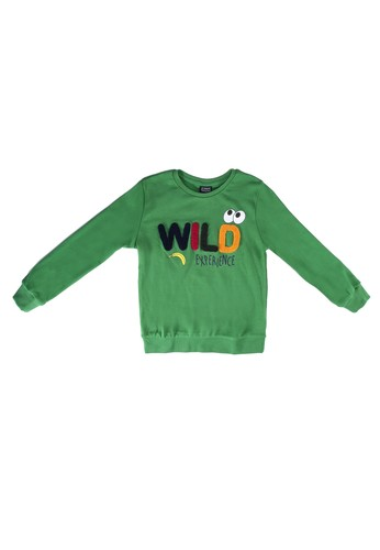 LC Waikiki green Boys Embroidery Cotton Sweatshirt 3CC59KAE621552GS_1
