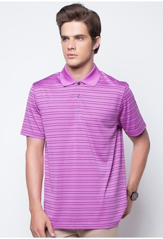 Two Color Feeder Polo