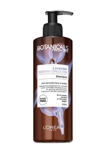 L'Oréal Paris Botanicals Lavender Soothing Shampoo AD1C9BE91B6FE1GS_1