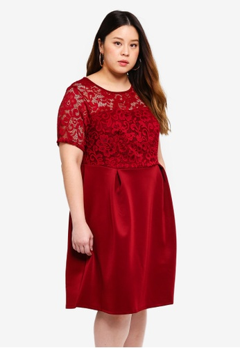Dorothy Perkins 紫色 Plus Size Wine Lace Front Dress A37CFAA746DBB6GS_1