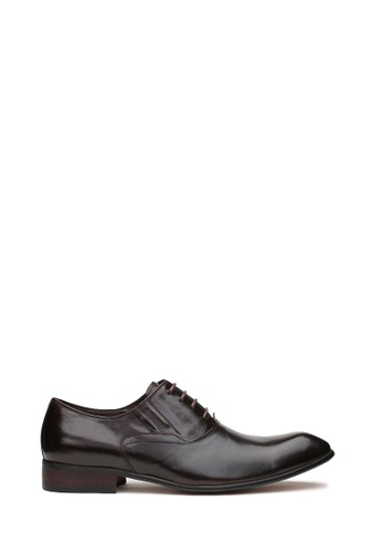 Kings Collection brown Palermo Derbies Shoes 9FCD1SH2CD35CCGS_1