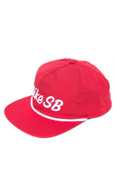Nike SB Unstructured Dri-FIT Pro Hat