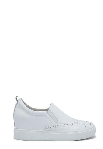 PAZZION Sneakers PA624SH85TSGMY_1