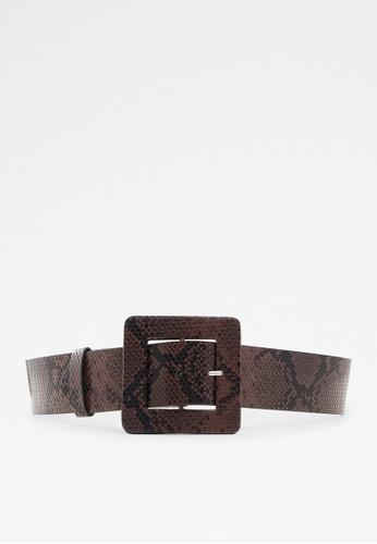 ALDO brown Riviel Belt 1657BAC25614A1GS_1