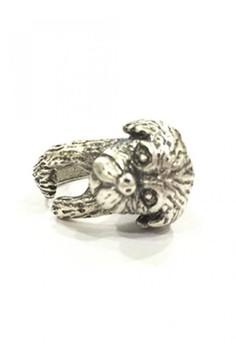 Shih Tzu puppy ring