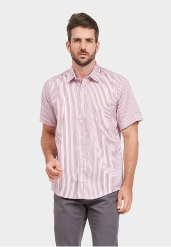 ARAMIS pink ARAMIS Short Sleeve Stripe Shirt 60207 BF90BAA7DD587AGS_1