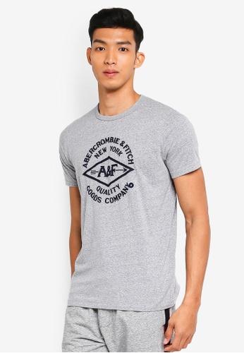 Abercrombie & Fitch grey Brand Logo T-Shirt E7826AA59E8B97GS_1