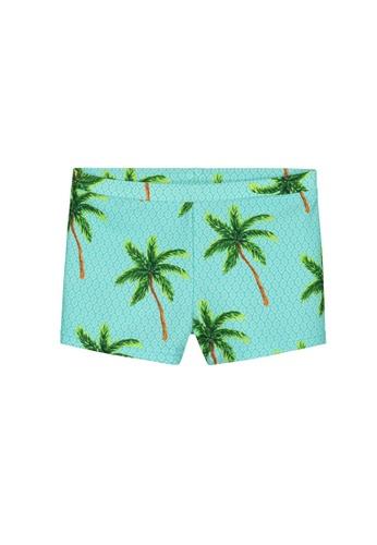 Shiwi blue Painted Palms Swimboxer 1D9D9KA574C5AFGS_1