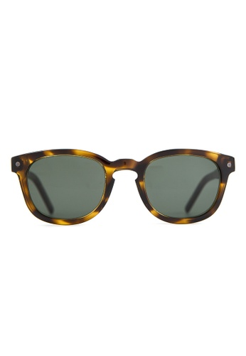 Marshall Eyewear brown and green Robert Olive Turtle MA266AC54OWZSG_1