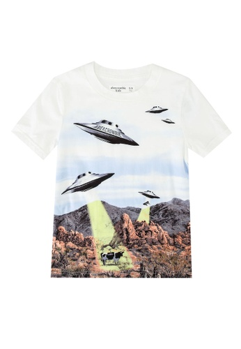 Abercrombie & Fitch white and multi Western Imagery Print Logo T-Shirt C3DB8KA7F3C082GS_1