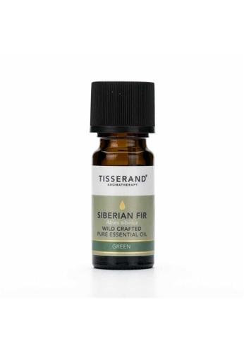 Pure & Well Tisserand Siberian Fir Essential Oil 9Ml 3287FES6BA7F11GS_1