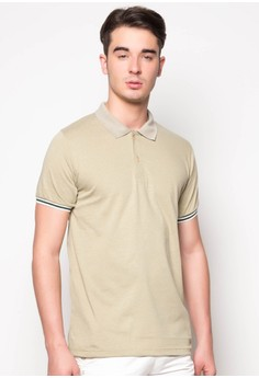 Polo with Stripe Tipping