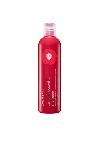 Innisfree Innisfree Camellia Essential Shampoo 300ml C127ABE648E337GS_1