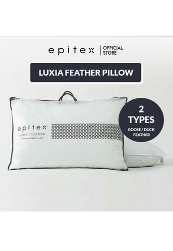 Epitex white Epitex Luxia Duck Feather - Real Feather Down Pillow - Down Pillow - Hotel Pillow (1200g) 308C5HL2C4FEA2GS_1