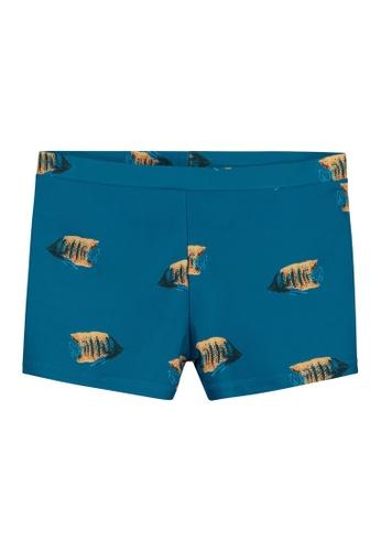 Shiwi blue Moonfish Swimboxers 62FEDKA43AA45FGS_1